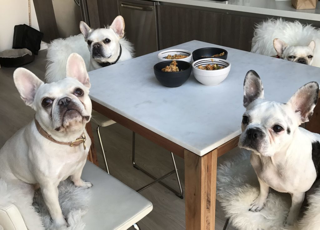 Healthy Homemade Food For Your French Bulldog What The Frenchie