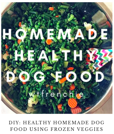 Healthy homemade food for your french bulldog what the frenchie disclaimer use your own judgement and of course speak to your veterinarian if you have questionsconcerns forumfinder Gallery
