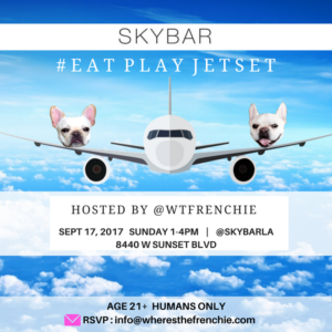 wtfrenchie skybar