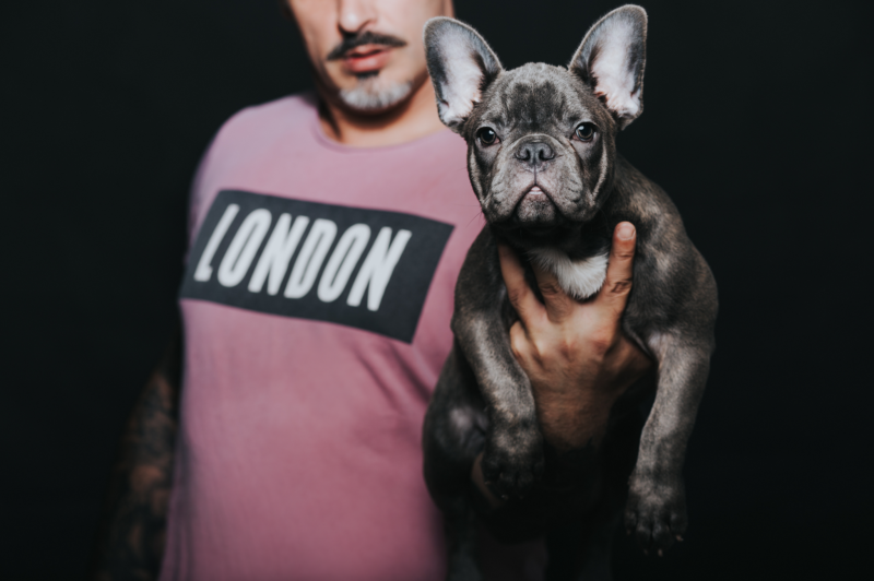 frenchie breeder
